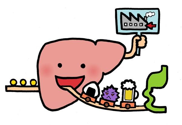 代謝でカロリーは消費される