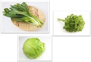 緑色の野菜