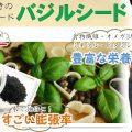 ダイエット向きのスーパーフード「バジルシード」