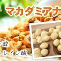 マカダミアナッツの低糖質&脂肪酸で美肌ゲット!