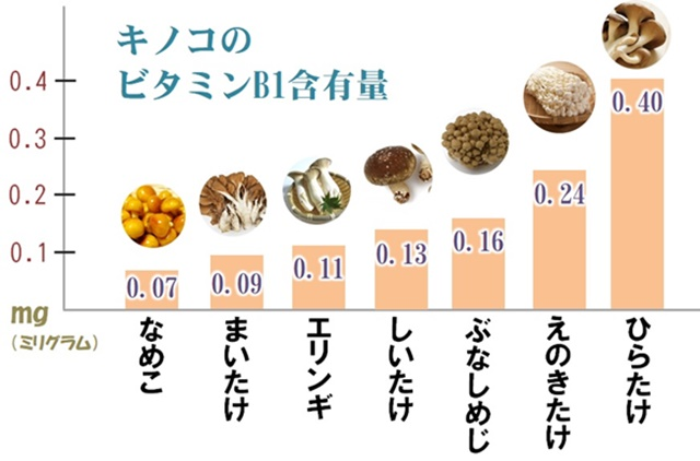 キノコに含まれるビタミンB1含有量