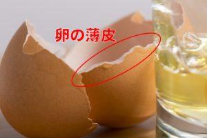 ヒアルロン酸など美容成分が豊富な卵の薄皮