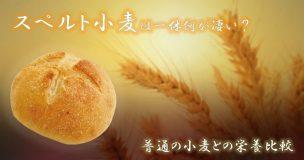 スーパフード「スペルト小麦」は何が凄いのか?