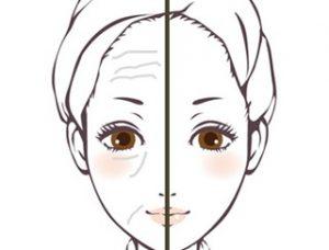 顔シワの有無による女性の見た目年齢の違いを比較